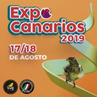 EXPO CANARIOS 5ta. Edición